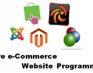 hire ecommerce developers1