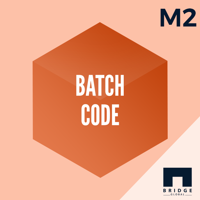 Magento 2 Batch Code Extensions -Bridge Store