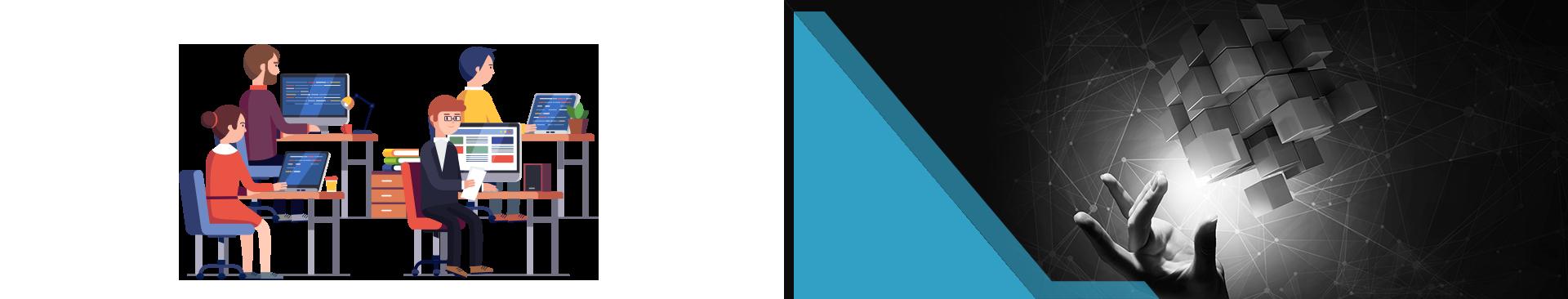 Remote Developer United States