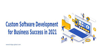 Why Is Custom Software Development Crucial for Business Success?