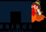 Bridge Global - Custom Software Development Company United States